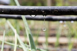 5 Benefits of Gravity Drip Irrigation Systems for Hillside Gardens